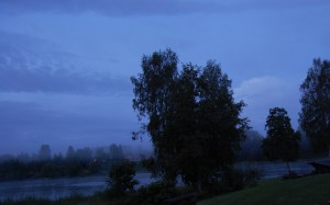 morgonälv